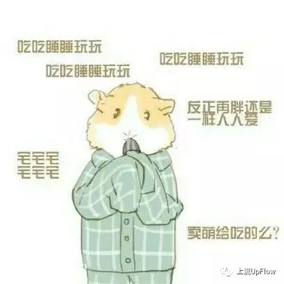 仓鼠系女友:可爱,一只小可爱,很容易满足,很容易开心,生气了也很好哄.